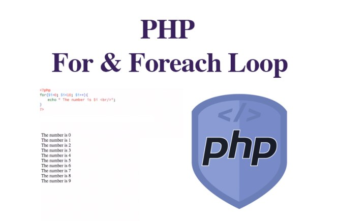 PHP For & Foreach Loop