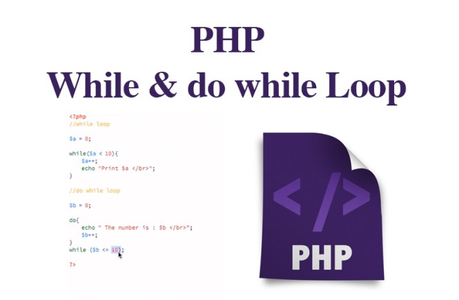 PHP While & do while Loop