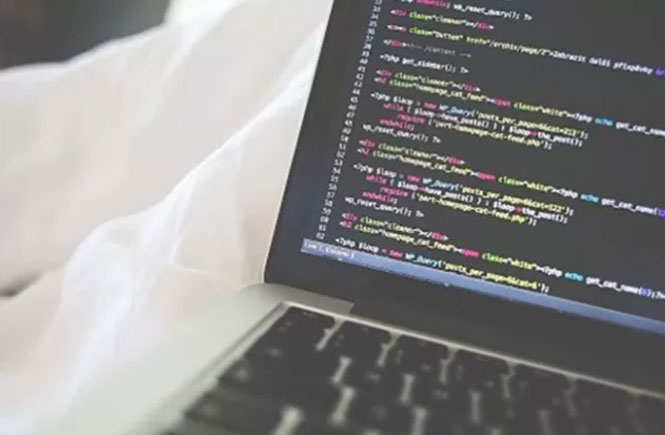 Top 10 Best Programming Languages to Learn