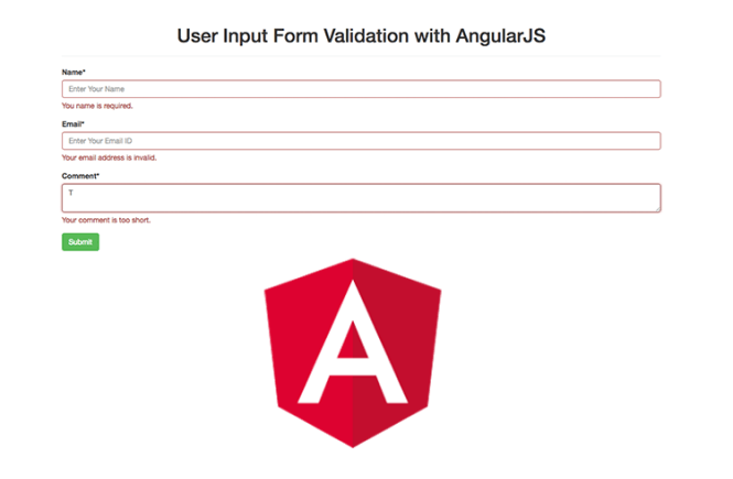 User Input Form Validation with AngularJS