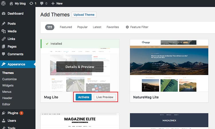 activate or live preview theme WordPress