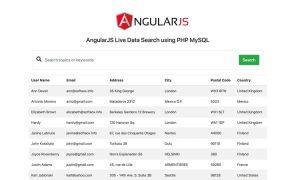AngularJS Live Data Search using PHP MySQL