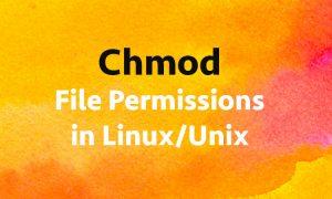 Chmod File Permissions in Linux/Unix