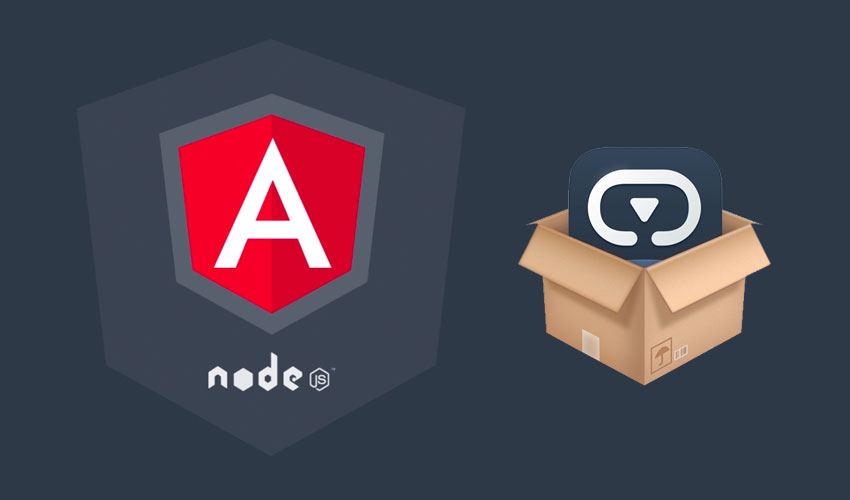 how to install Angular first app project
