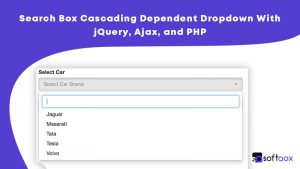 Search Box Cascading Dependent Dropdown With jQuery, Ajax, and PHP